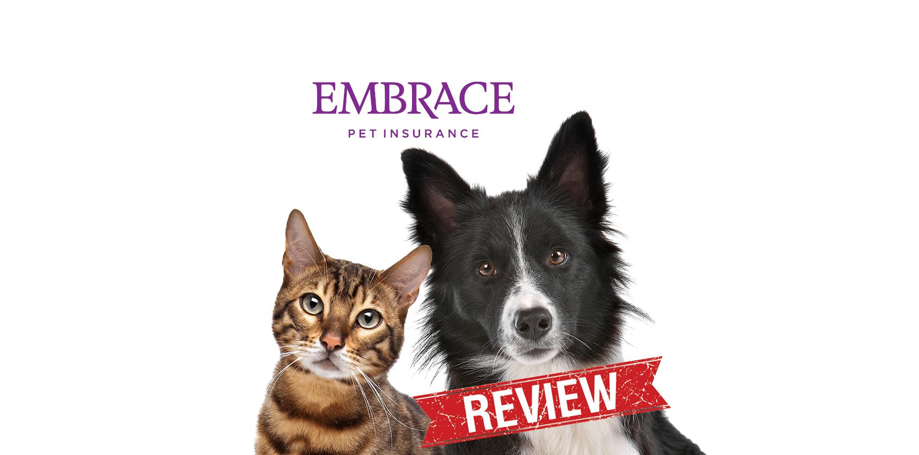 best pet insurance for cats reviews