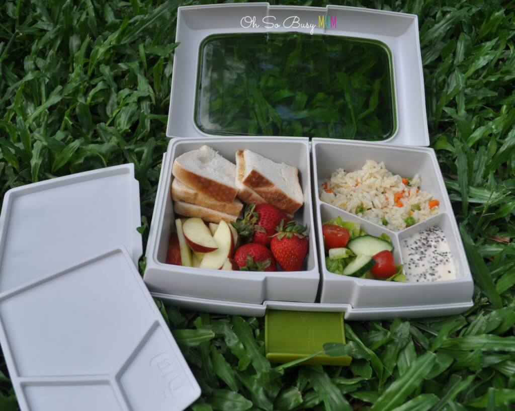 fuel bento lunch box review