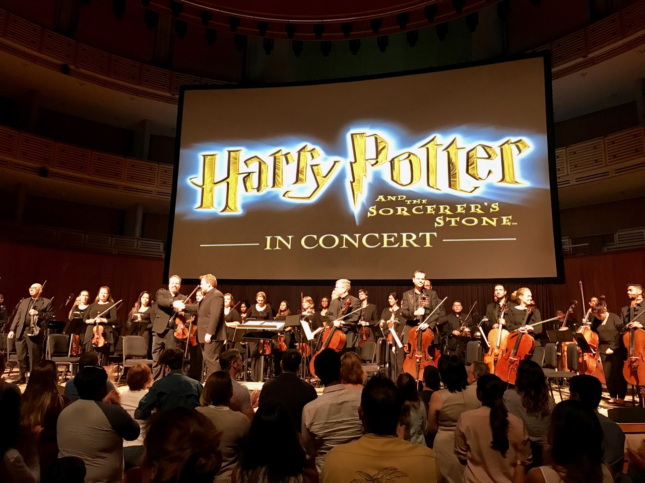 harry potter in concert review
