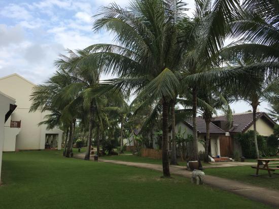 palm garden beach resort hoi an reviews