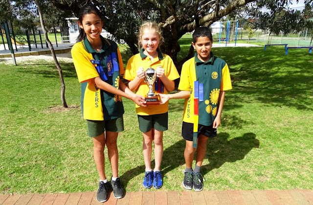 wattle park primary school review