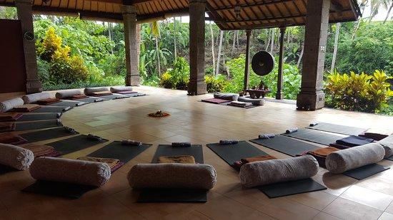 one world retreats bali review