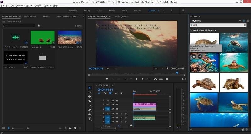 adobe premiere pro 2.0 review