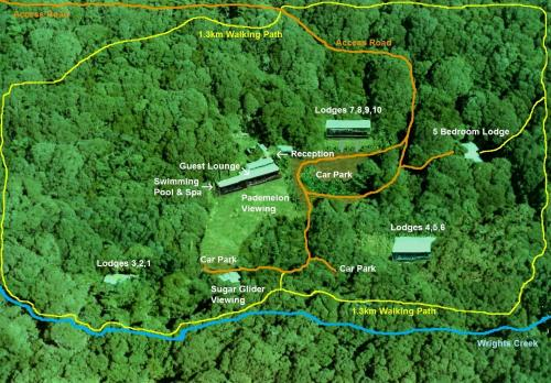 chambers wildlife rainforest lodges review