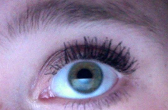 great lash lots of lashes review