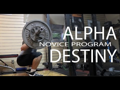 alpha destiny novice program review