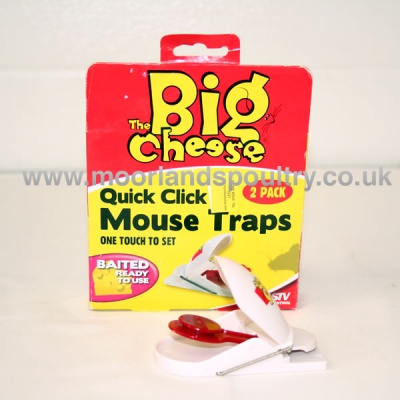 big cheese mouse trap review