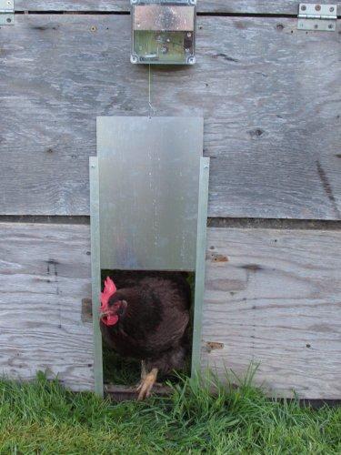 chicken coop automatic door opener reviews