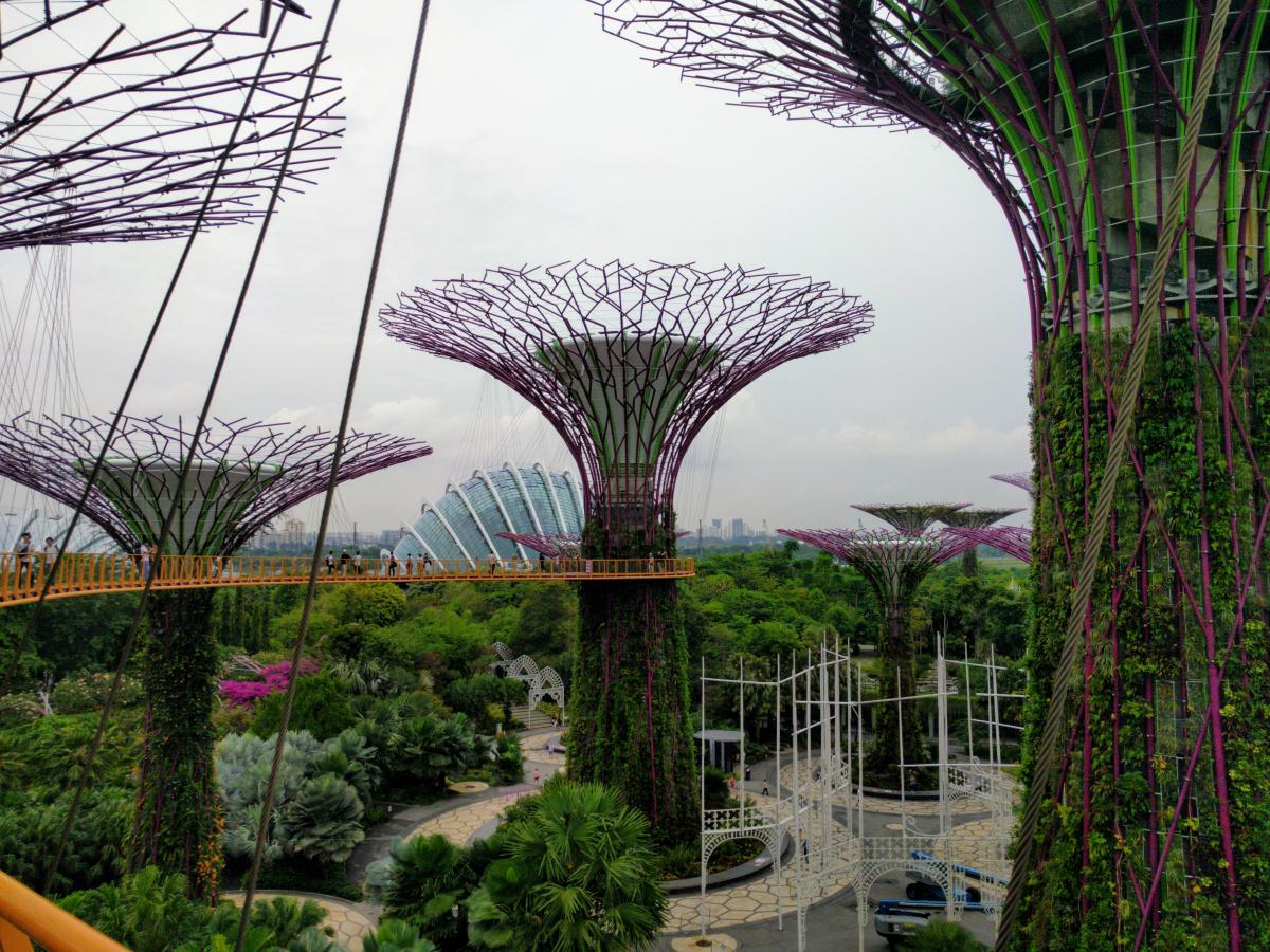 gardens by the bay review