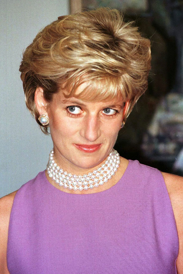 diana 7 days that shook the world review