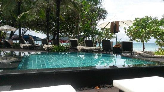 impiana resort patong phuket reviews